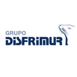 Grupo Disfrimur Logo